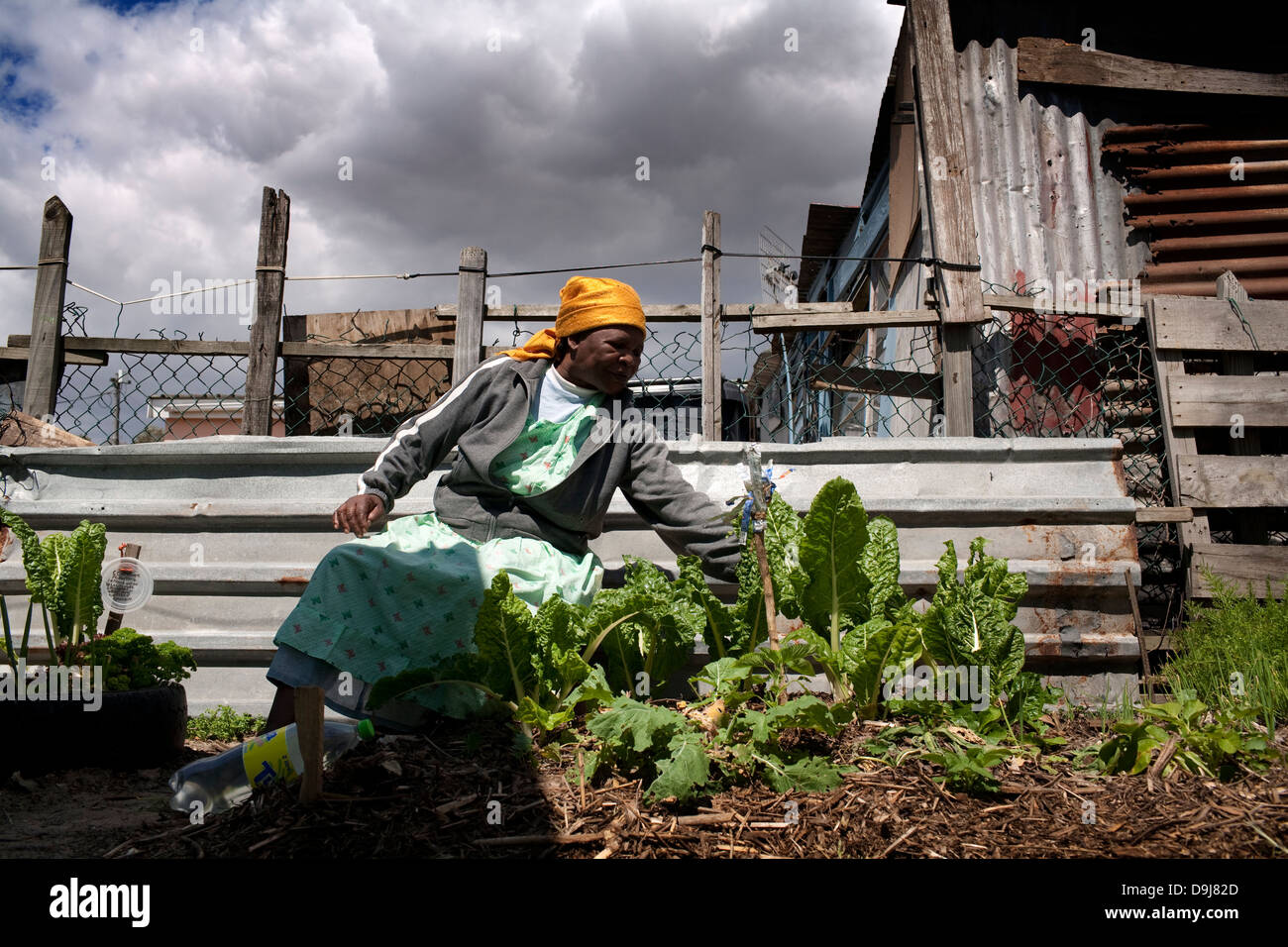 Nomathemsanqa Qhaga completed Soil Life training program 1 year ago She is unemployed She is happy to have been - Stock Image