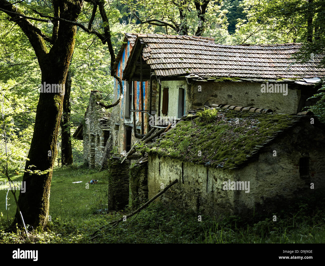 A forest in Terentino, Northern Italy fairytale house - Stock Image
