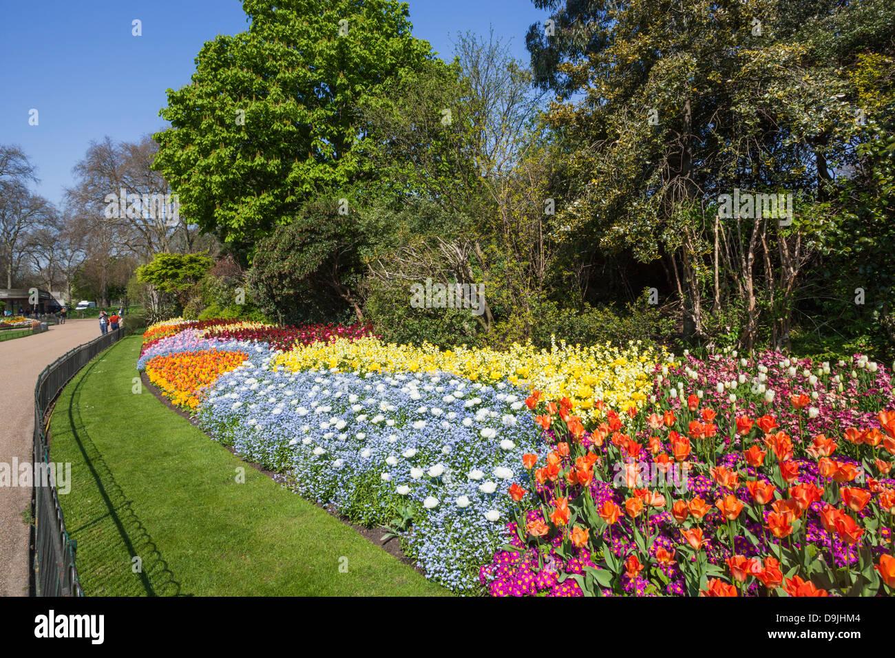 England london st james park spring flowers stock photo 57572036 england london st james park spring flowers mightylinksfo