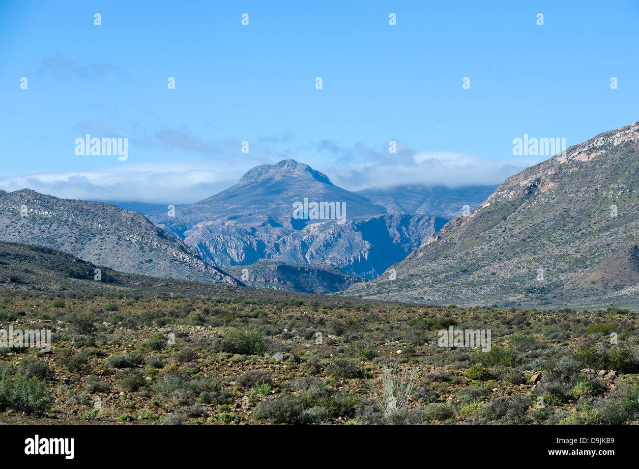 Karoo vegetation, mountains and house, Prince Albert, Western Cape, South Africa - Stock Image