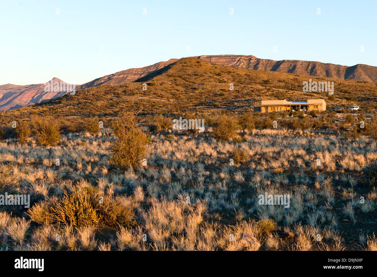 Karoo vegetation and lodge, Prince Albert, Western Cape, South Africa Stock Photo