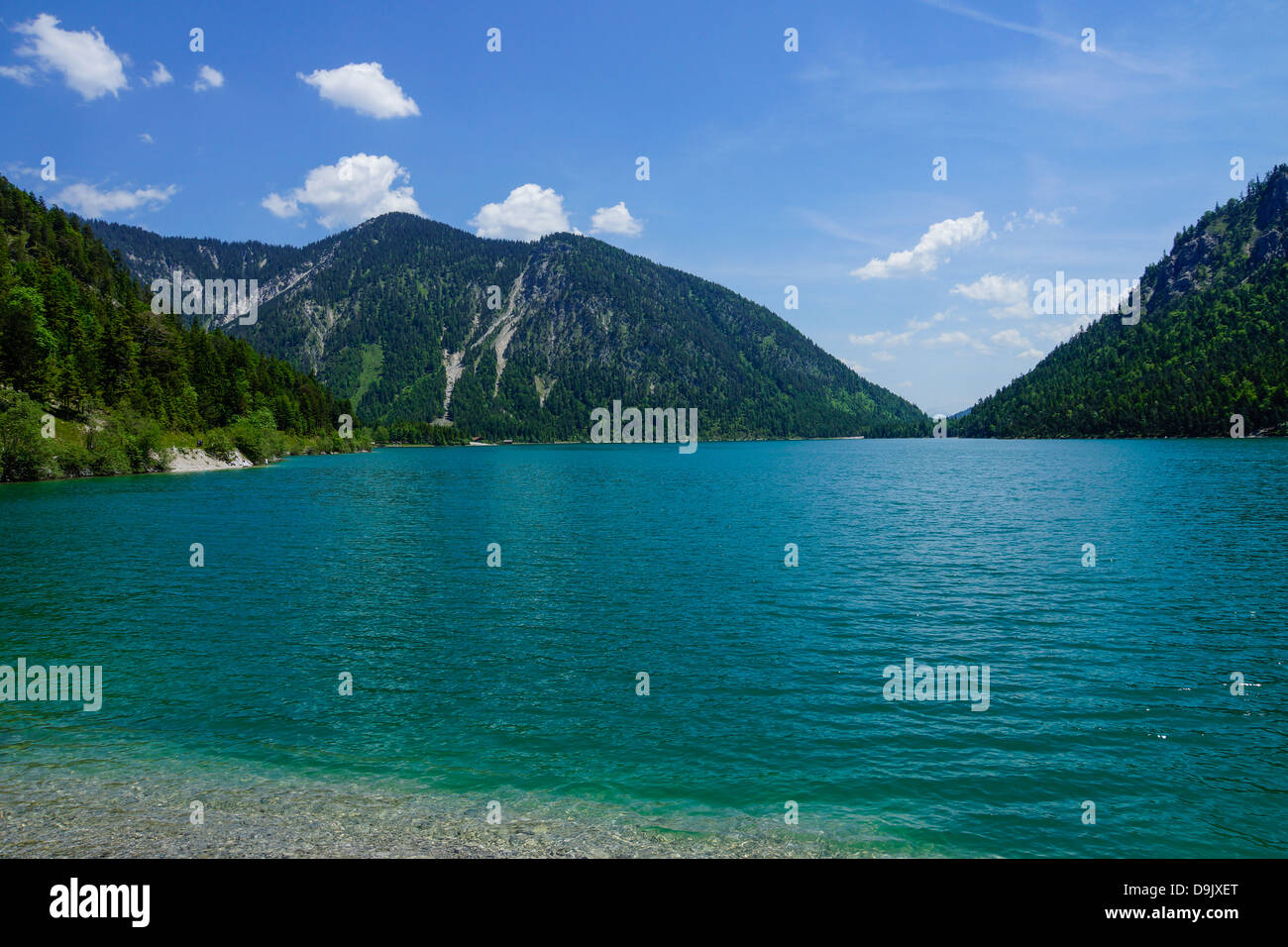 Plansee Lake, Ammergau Alps, Ammer Mountains - Stock Image