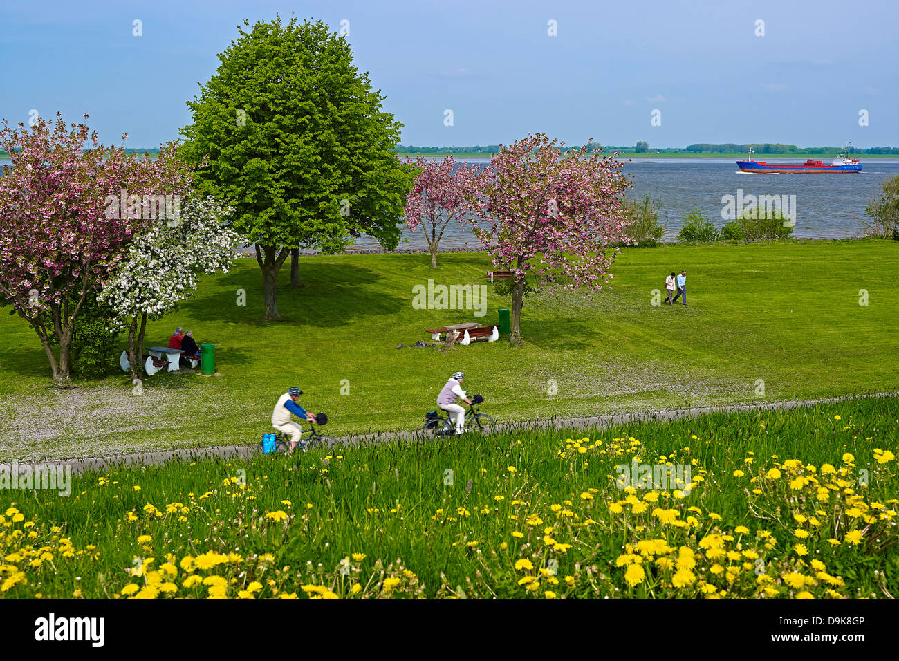 On the Elbe River near Gruenendeich, Altes Land, Stade District, Lower Saxony, Germany Stock Photo