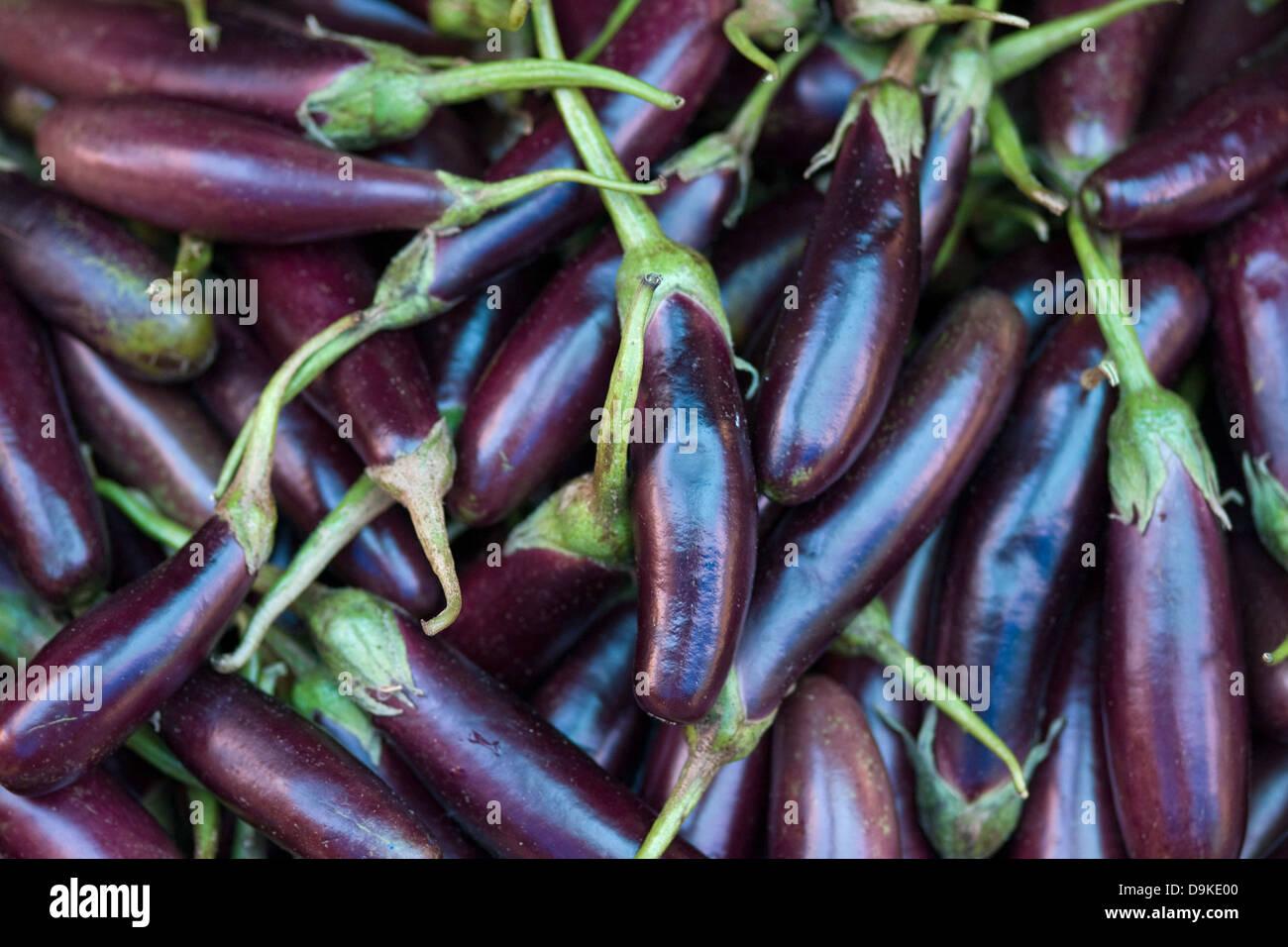 Asia, India, Karnataka, Madikeri, eggplant on the market Stock Photo