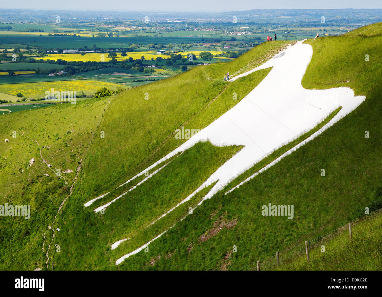 Westbury White Horse and the earthworks of Bratton Camp on the Wiltshire Downs near Trowbridge UK Stock Photo