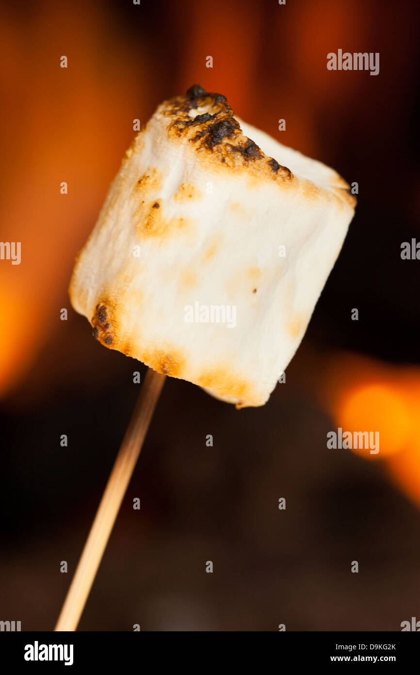 Delicious White Fluffy Roasted Marshmallows in front of a fire - Stock Image
