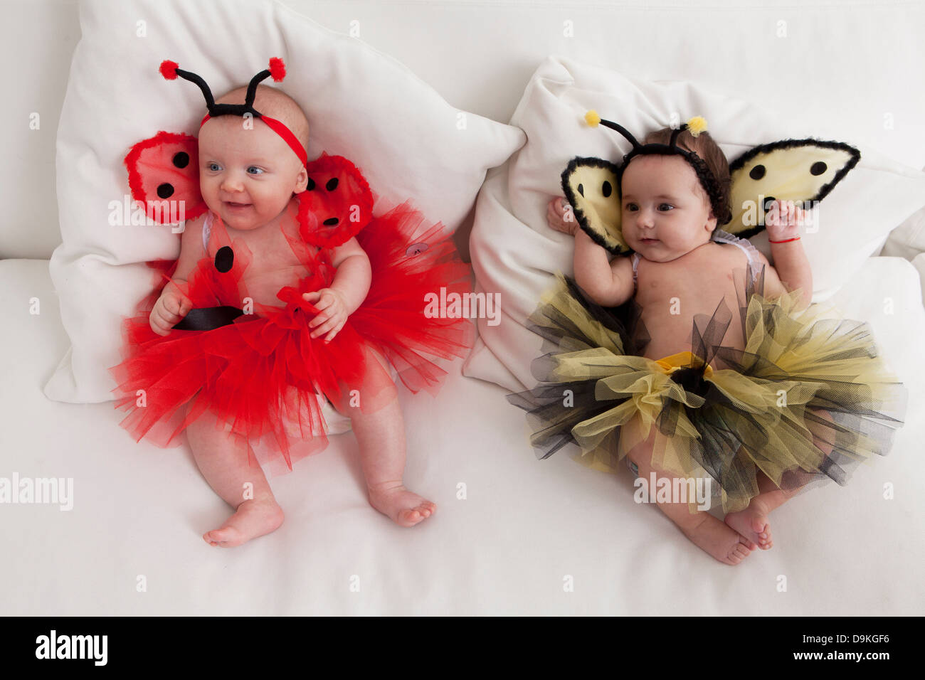 baby girls dressed as insects - Stock Image