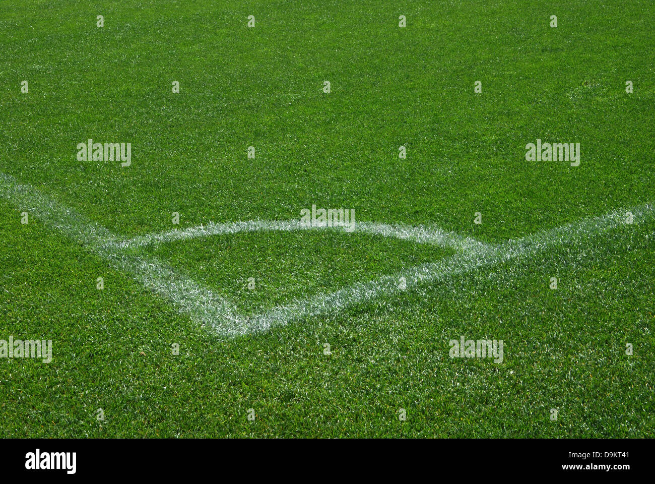 detail of lawn of Barcelona football stadium Spain - Stock Image