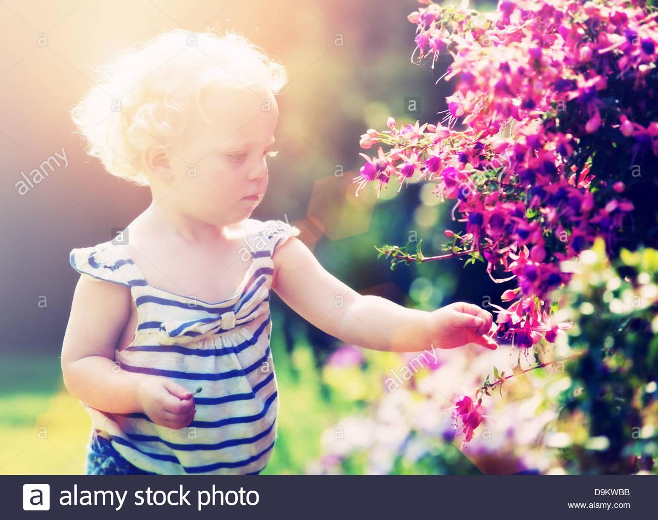 toddler picking flowers - Stock Image