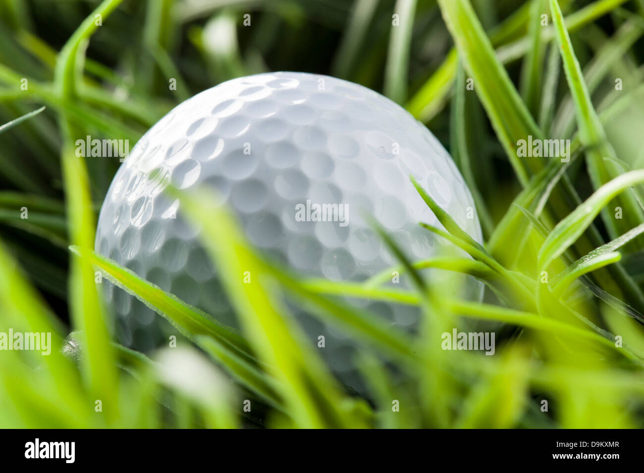 Pure White Golfball on bright green grass - Stock Image