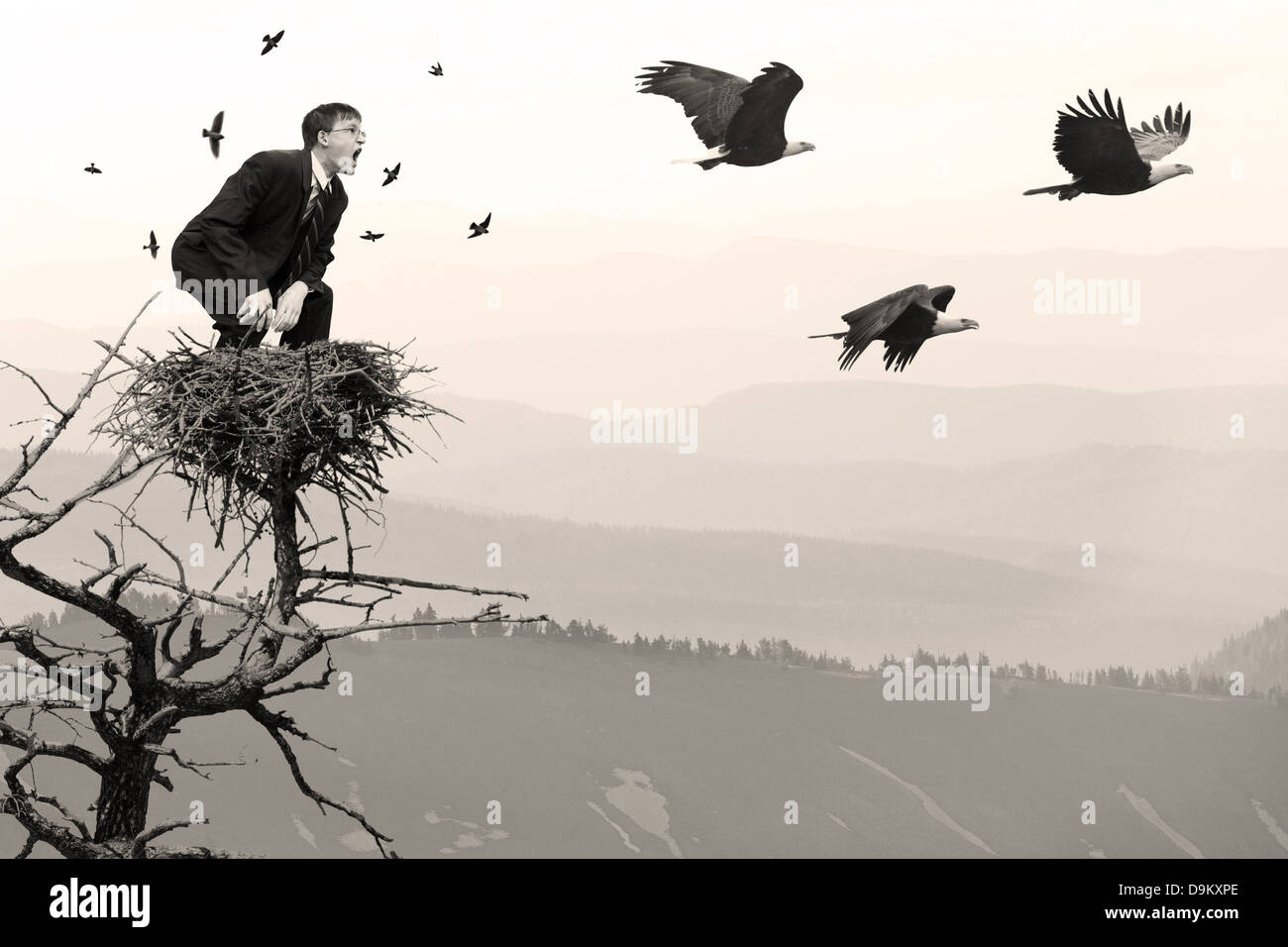 businessman in net screaming at eagles flying away scared birds flying away nature man conflict environmental concern - Stock Image