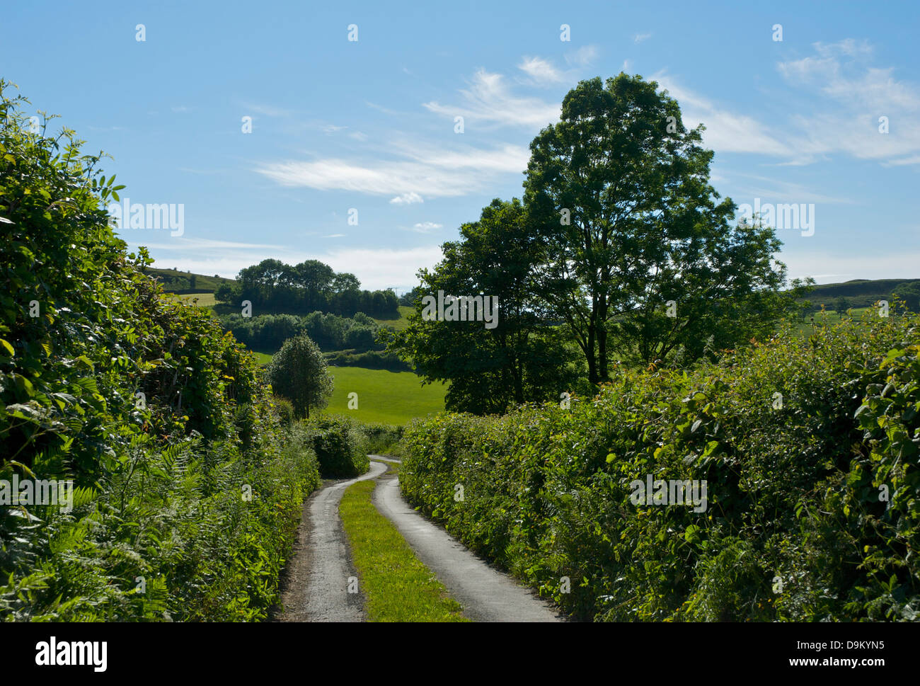 Narrow country lane near the village of Hutton Roof, Cumbria, England UK - Stock Image