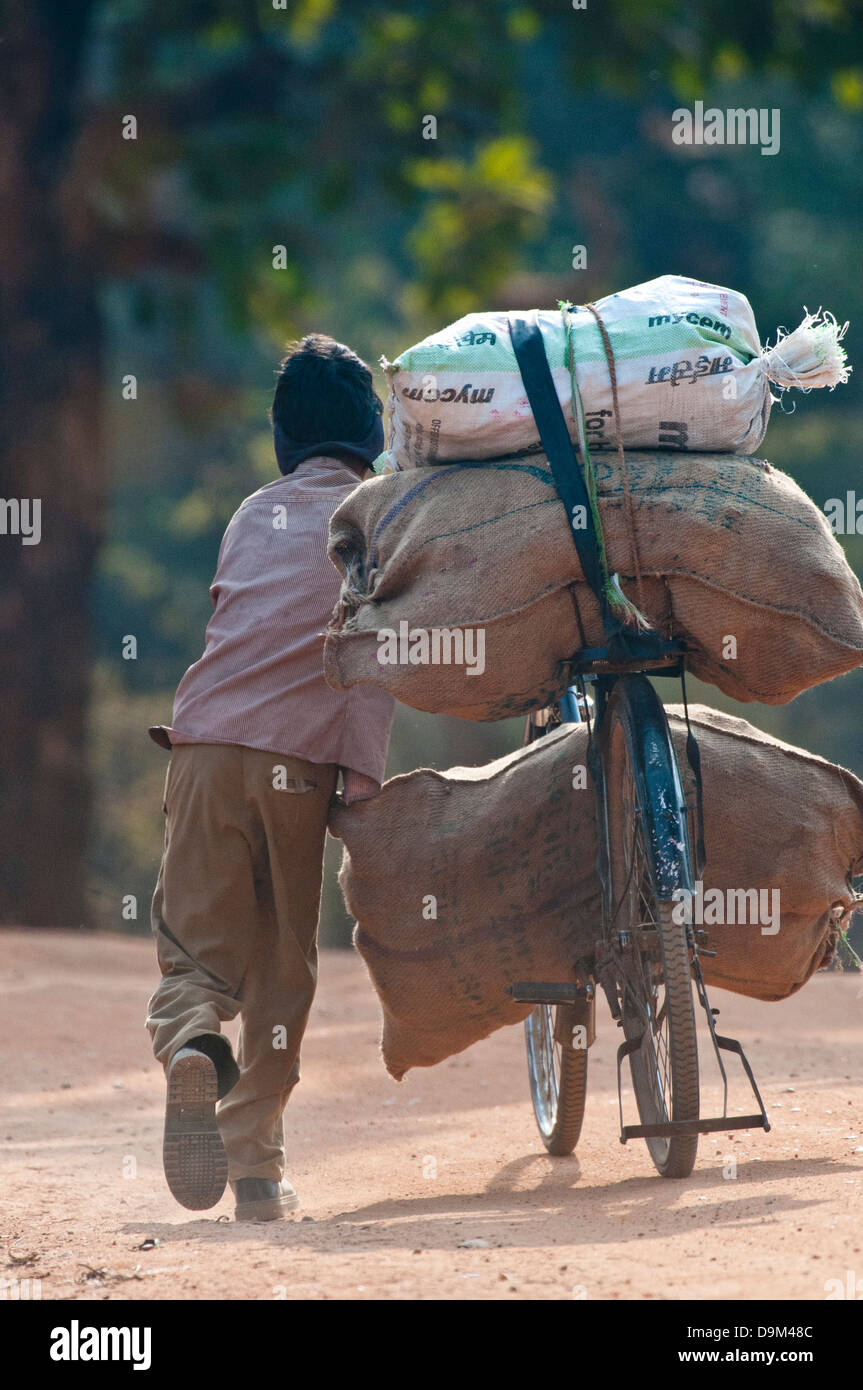 Indian boy pushing heavy load on bicycle in north-central India - Stock Image