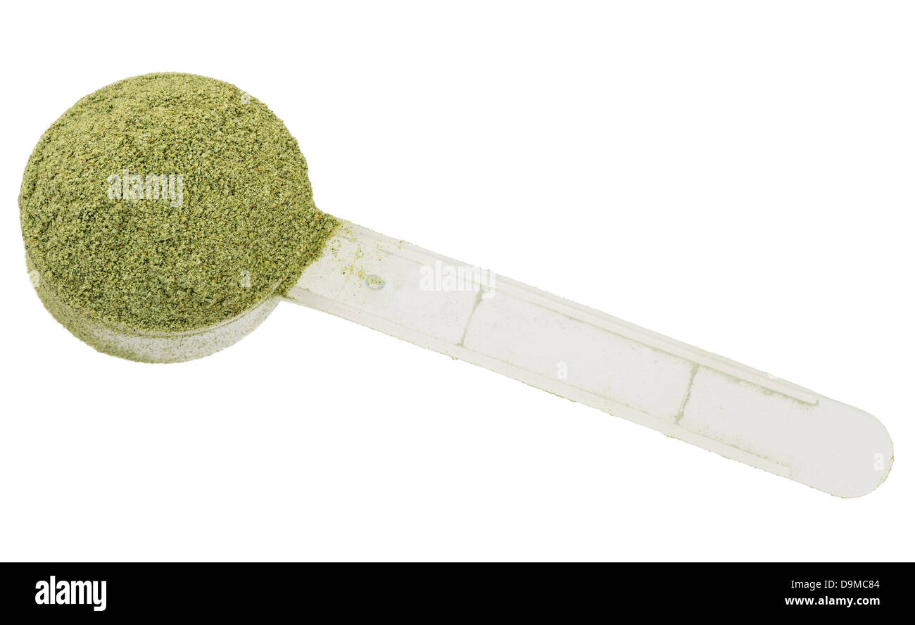 scoop of green nutritional drink powder on white background - Stock Image