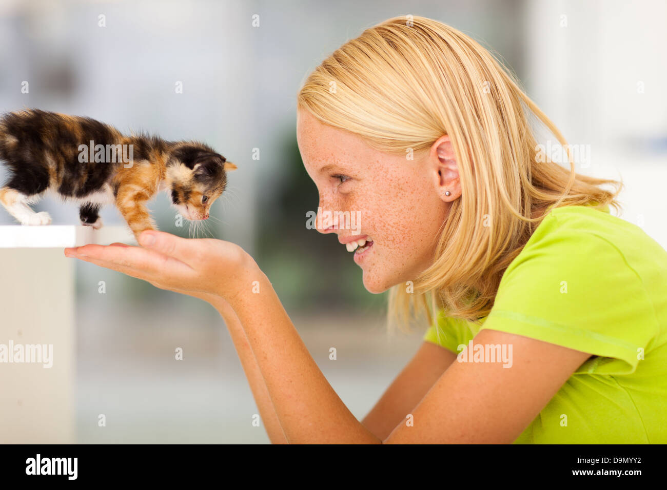 loving teen girl playing with pet kitten at home - Stock Image