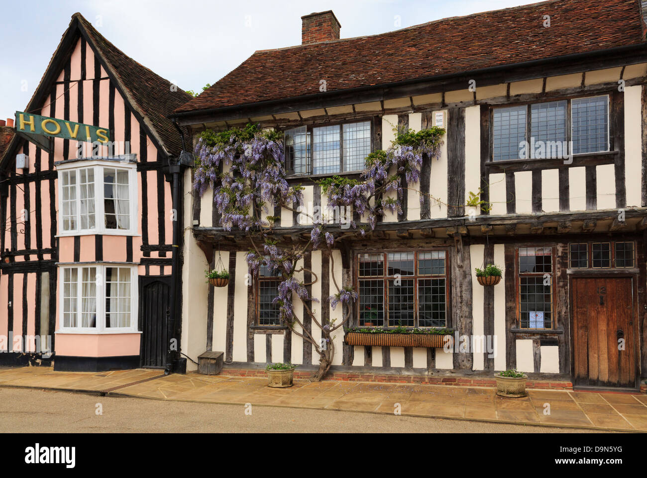 Wisteria floribunda growing on a timbered house front in historic village. Market Place, Lavenham, Suffolk, England, - Stock Image