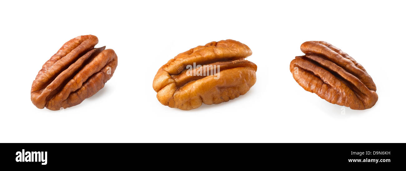 pecan - Stock Image