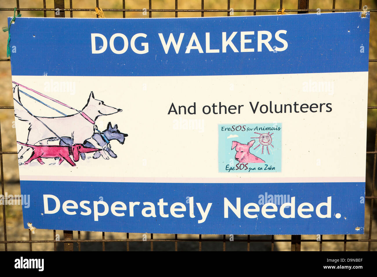 An animal welfare charity in Skala Eresou on Lesvos, Greece. - Stock Image