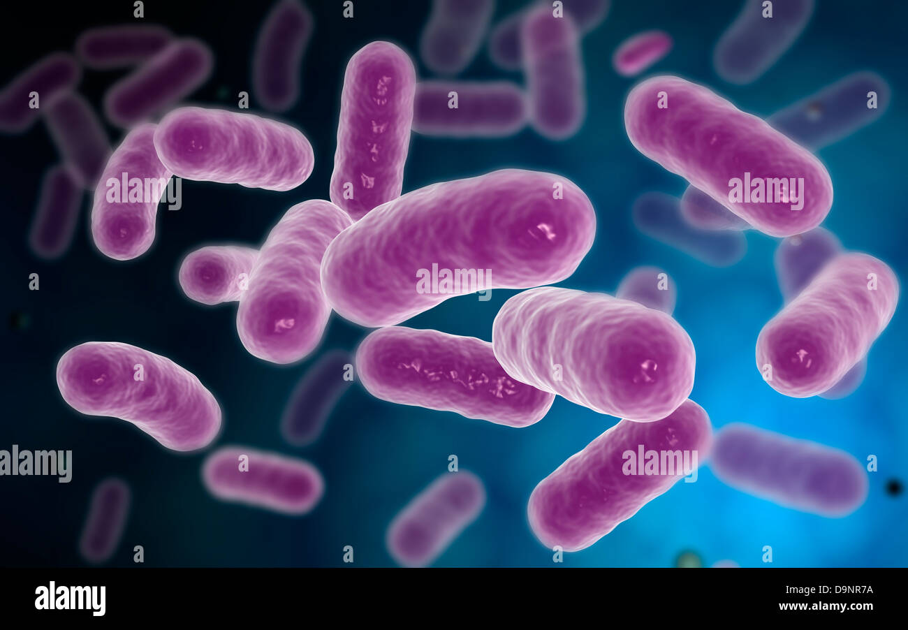 Conceptual image of bacteria. - Stock Image