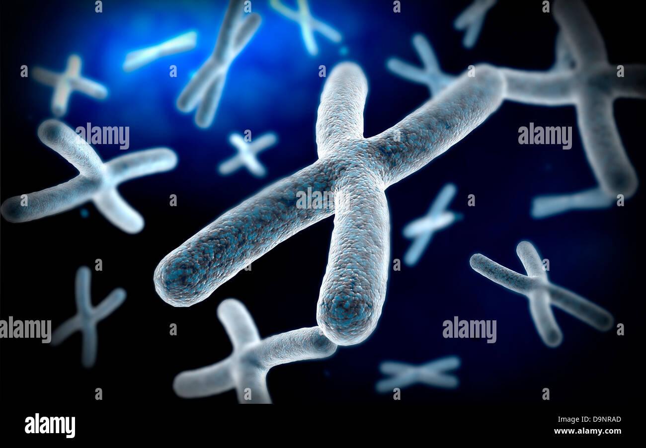 Microscopic view of chromosome. - Stock Image