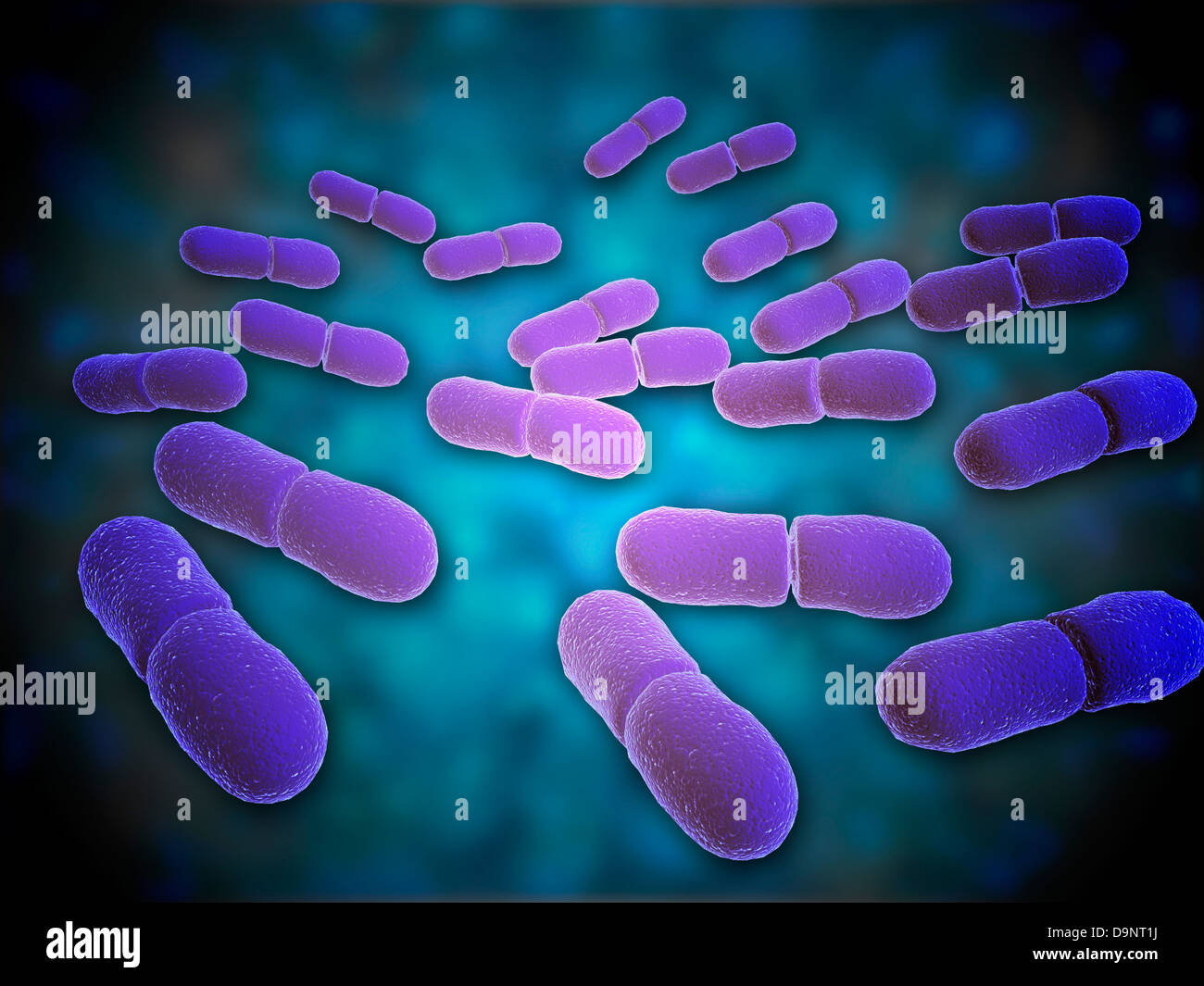 Listeria Monocytogenes Bacteria Stock Photos & Listeria ...