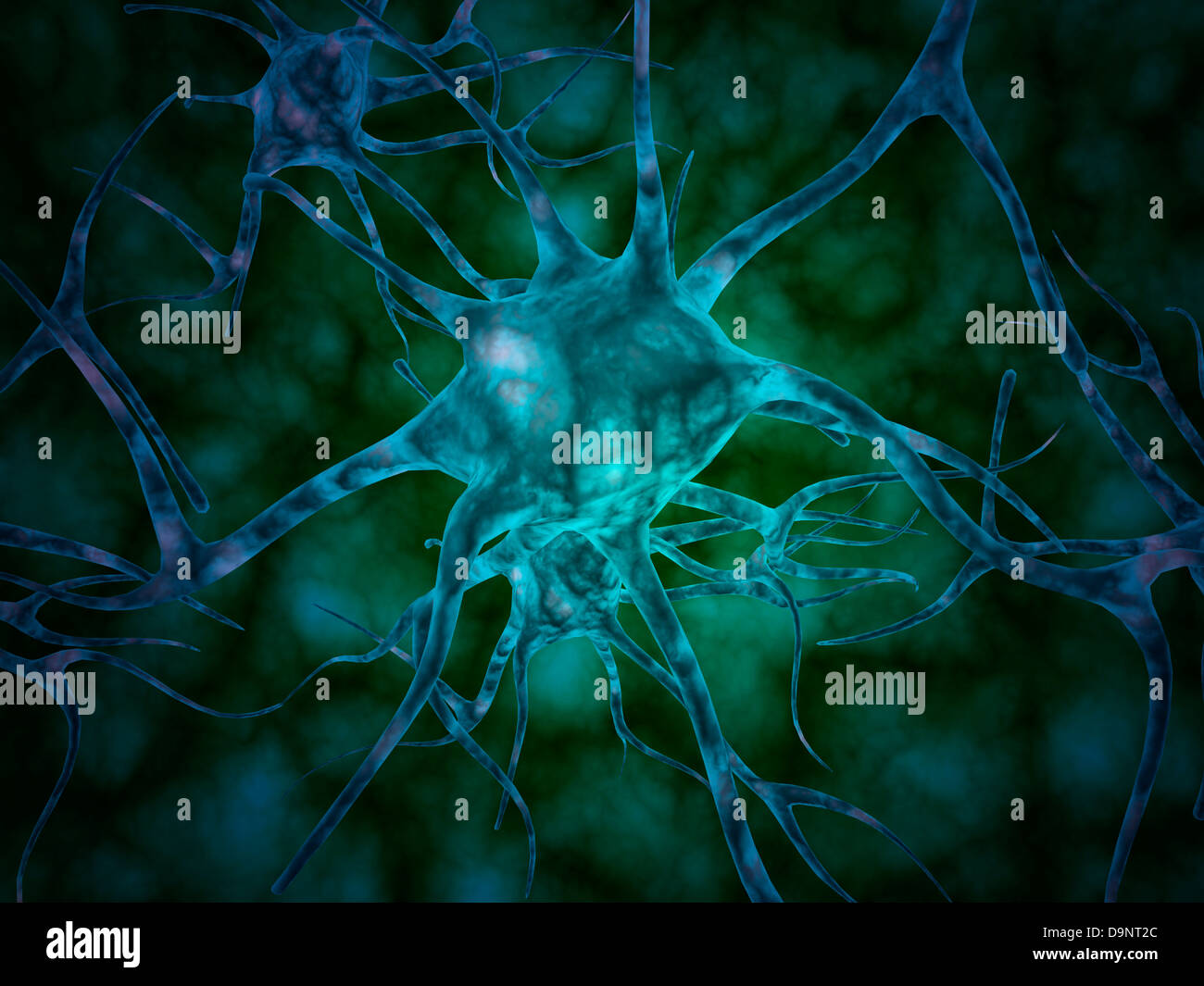 Microscopic view of multiple nerve cells, known as neurons. - Stock Image
