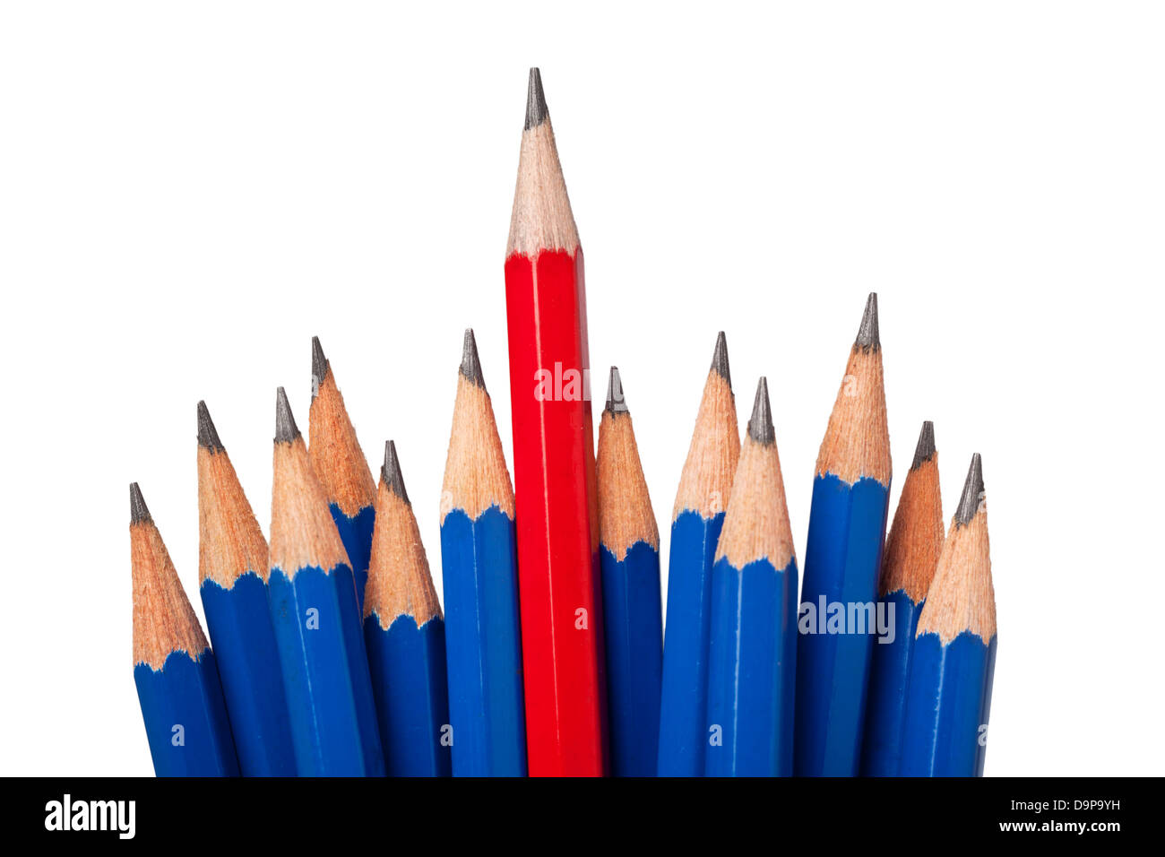 Red pencil standing out from a bunch of blue pencils isolated on white background - Stock Image
