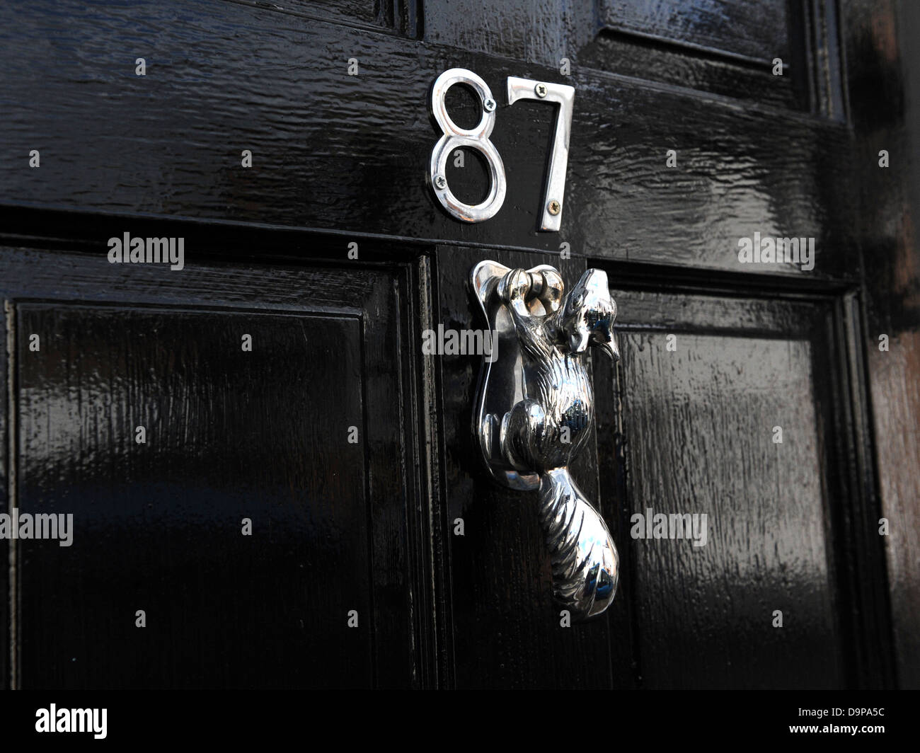 A black door with a chrome squirrel door knocker. & A black door with a chrome squirrel door knocker Stock Photo ...