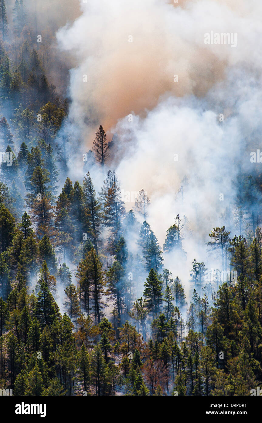 East Peak Fire wildfire rages June 21, 2013 near La Veta, CO. The fire began after a lightening strike has burned - Stock Image