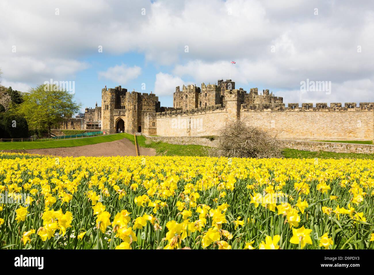 Alnwick Castle, Northumberland - Stock Image