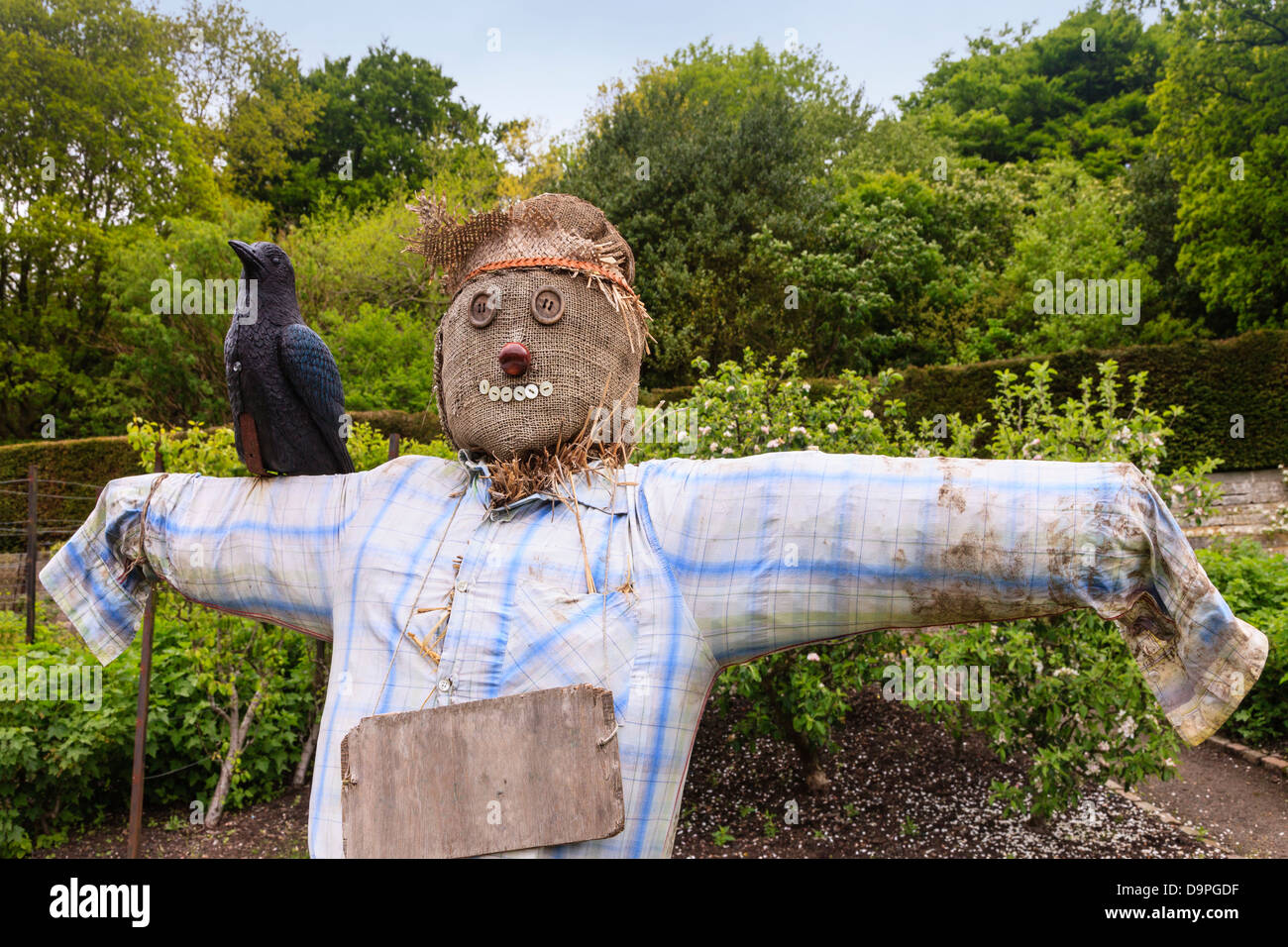Scarecrow made from old clothing and stuffed with straw, Scotland, UK - Stock Image