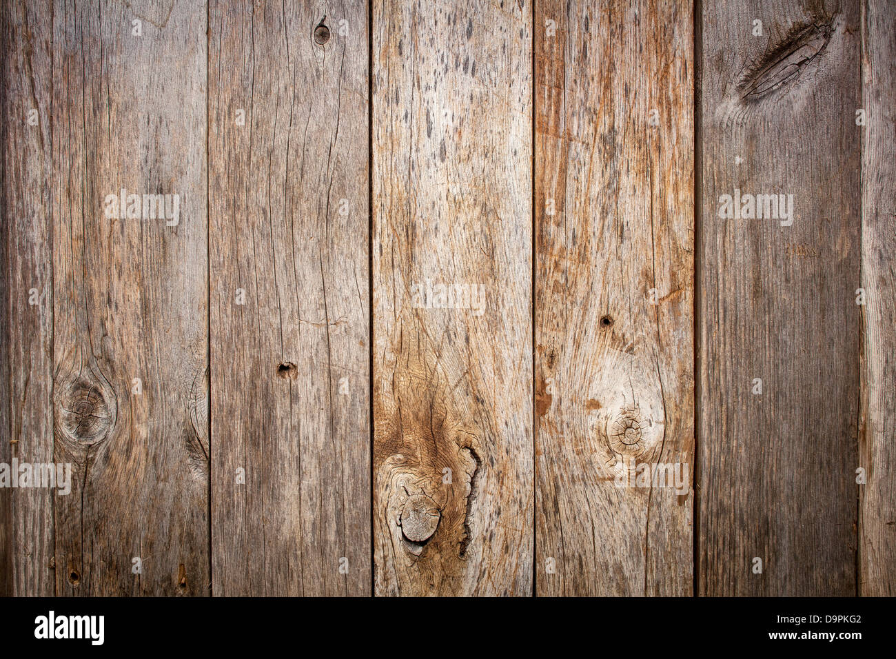 grunge weathered barn wood background with knots and nail holes - Stock Image