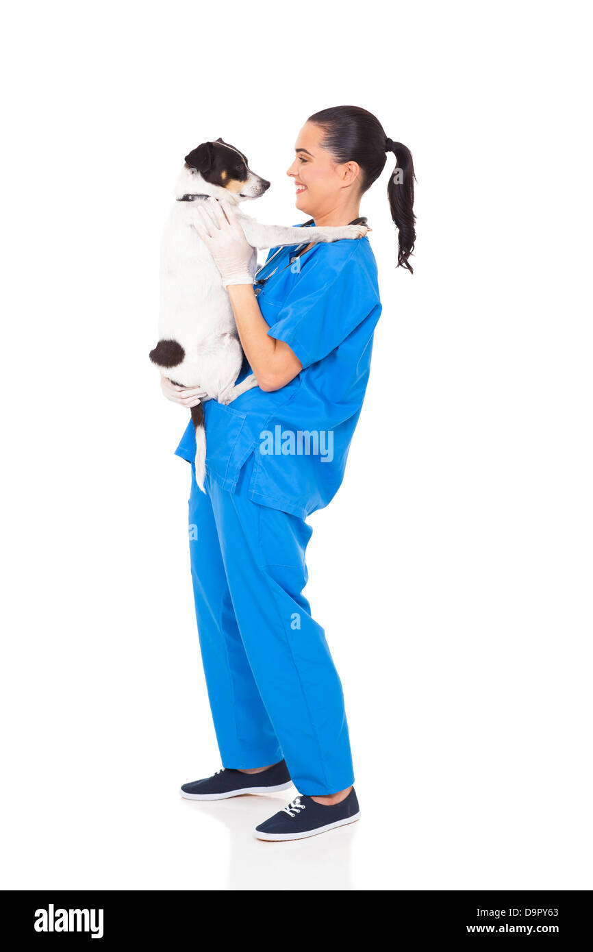 professional vet doctor holding a dog isolated on white - Stock Image