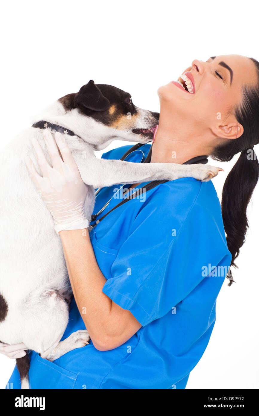 funny pet dog licking vet nurse's neck on white background - Stock Image