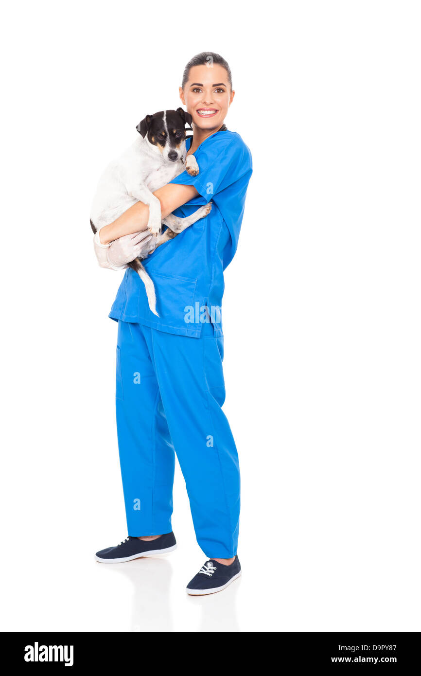 caring veterinarian holding a dog isolated on white background - Stock Image