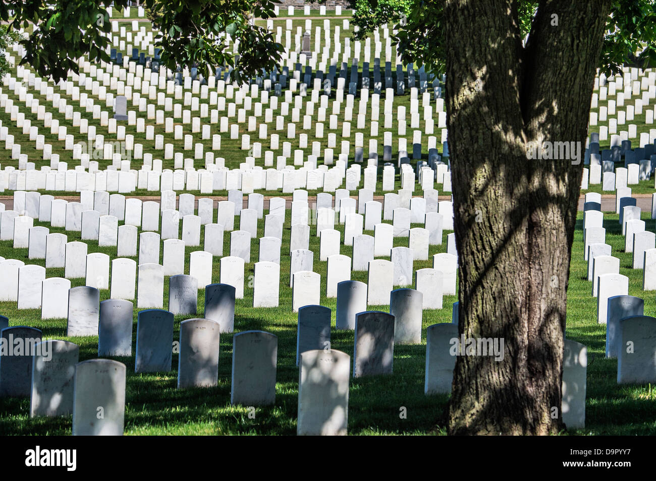 US Soldiers' and Airmen's Home National Cemetery, Washington, DC, USA - Stock Image