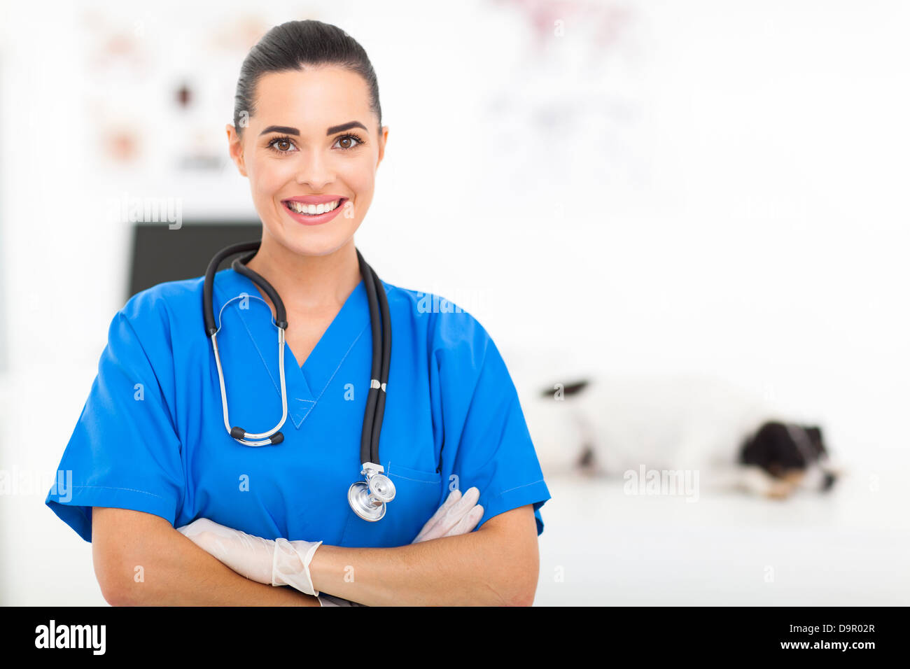 modern pretty veterinarian portrait in office - Stock Image