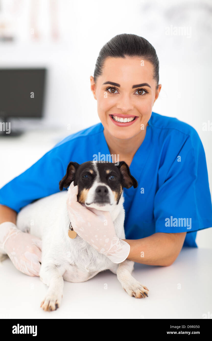 friendly female vet with pet dog - Stock Image
