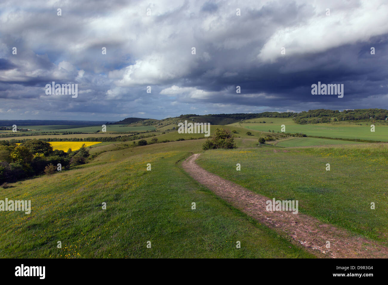 Ridgeway Path to Ivinghoe Beacon Chilterns Buckinghamshire - Stock Image