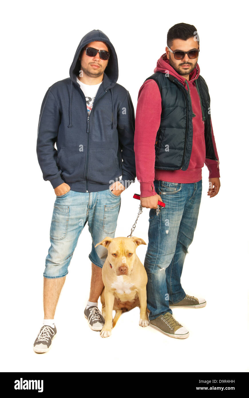 c85139fa7c4f Bad boys with pitbull isolated on white background Stock Photo ...