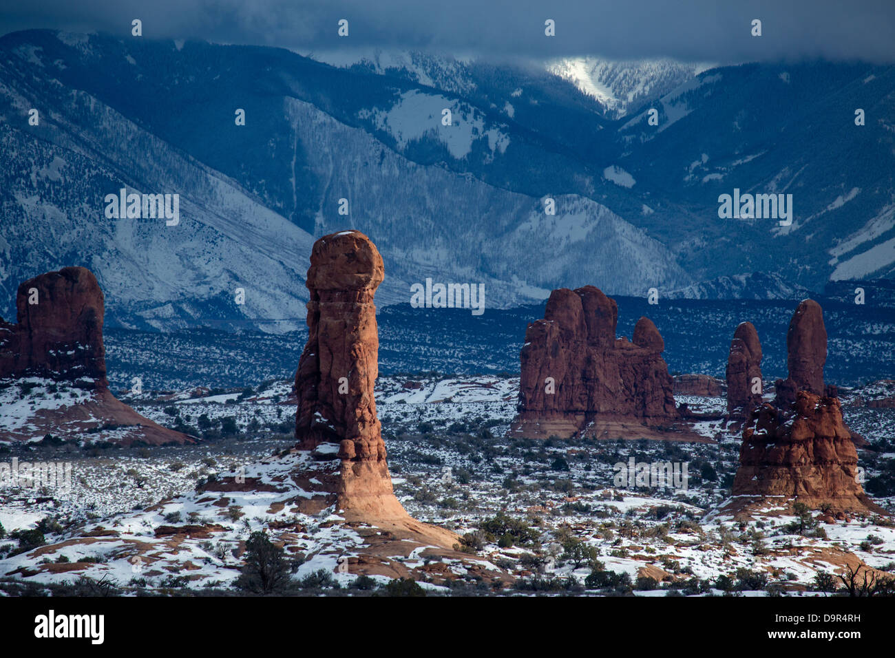 rock stacks in the Windows Section with the La Sal Mountains beyond, Arches National Park, Utah, USA - Stock Image