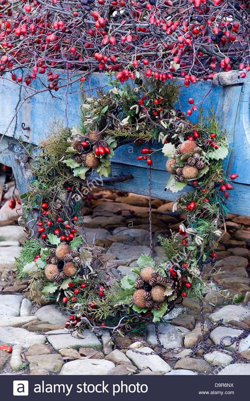christmas in the garden - Stock Image