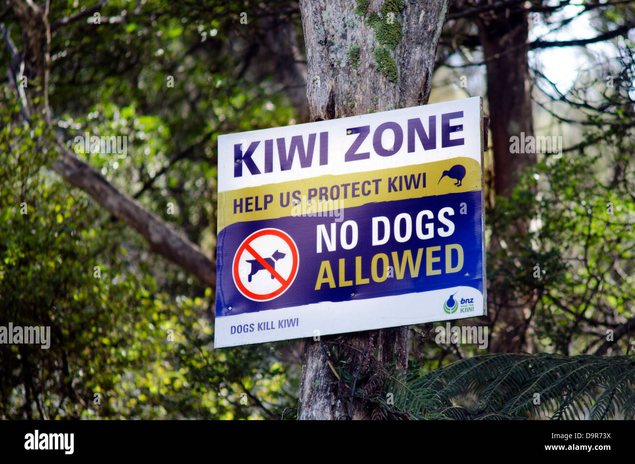 Kiwi zone sign in a rainforest in New Zealand - Stock Image