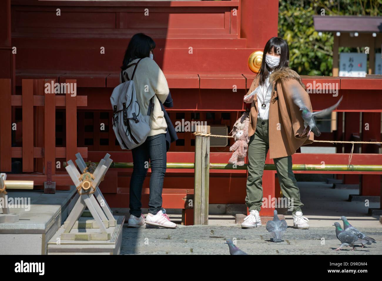 Japanese tourists at Tsurugaoka Hachimangu Shrine, Kamakura Stock Photo