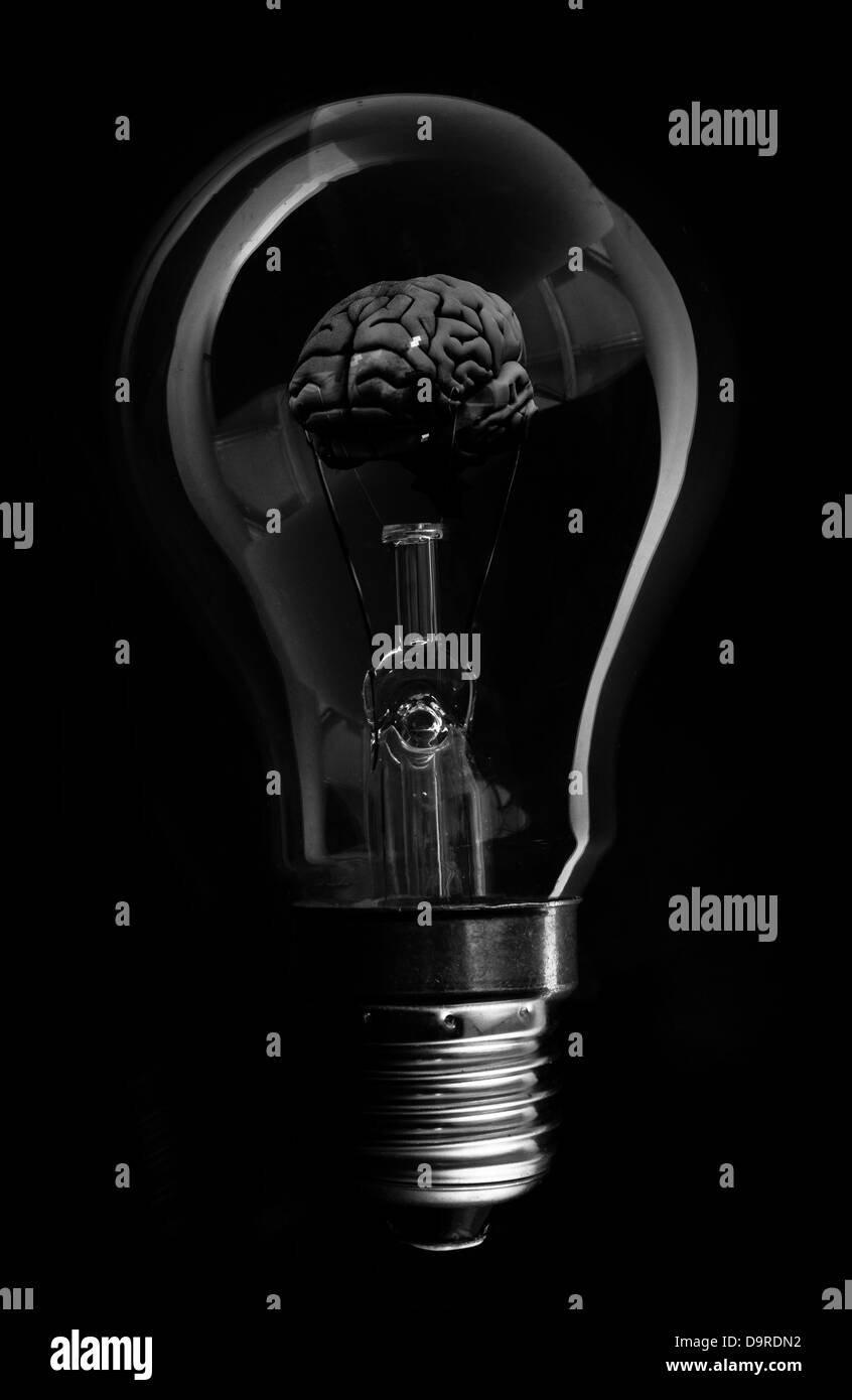 Black brain inside light bulb - Stock Image