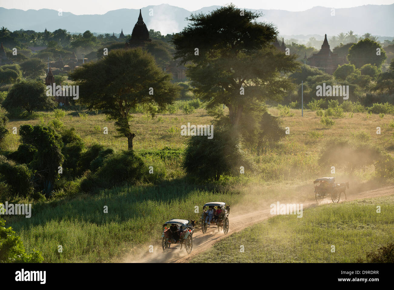 horse and carts in amongst the temples, Bagan, Myanmar (Burma) - Stock Image