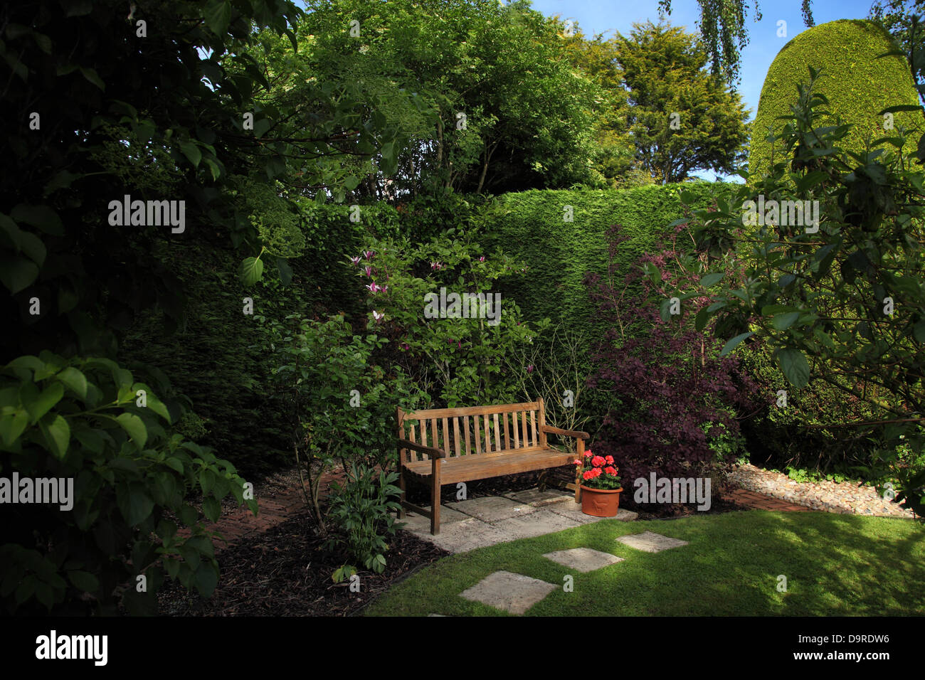Tranquil garden seat located in the sun beside tall hedging - Stock Image