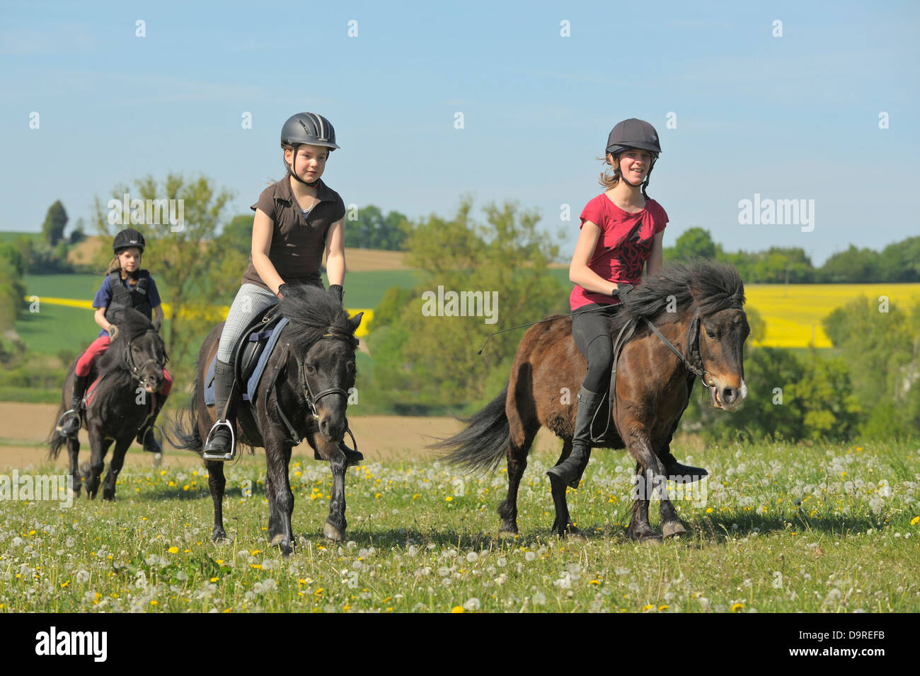 Three girls on Shetland Ponies galloping in a meadow - Stock Image