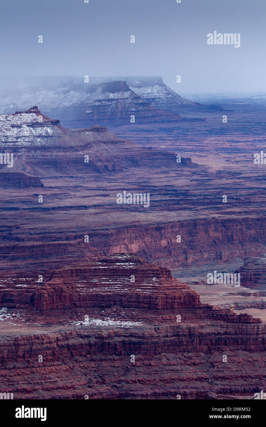 the Colorado Valley from Island in the Sky, Canyonlands, Utah, USA - Stock Image
