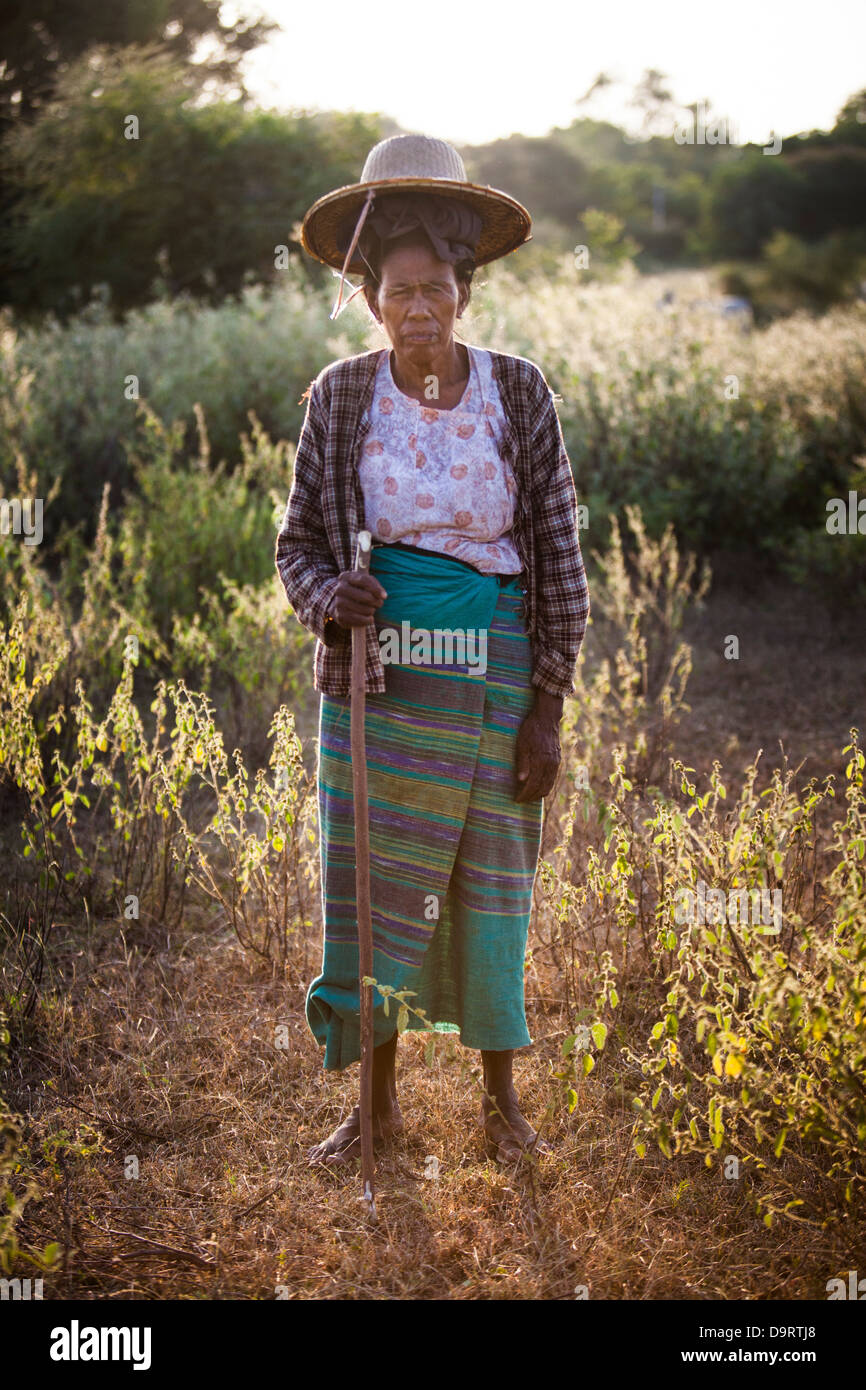 A local farming woman pauses in her field in Bagan at sunset. - Stock Image